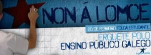 Cartel folga 20-F Galiza Nova