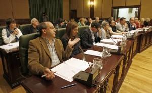Pleno Concello Ribeira. Carmela Queijeiro. L.V.G. BNG