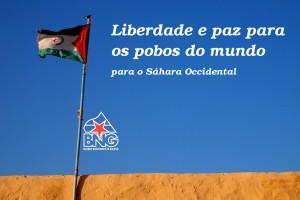 Sáhara Occidental. Bloque Nacionalista Galego