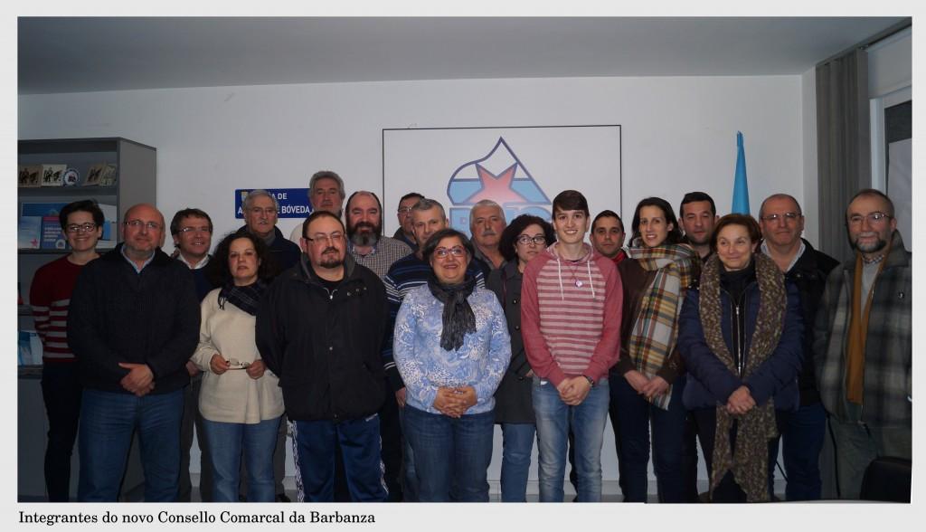Consello Comarcal. Marzo 2016